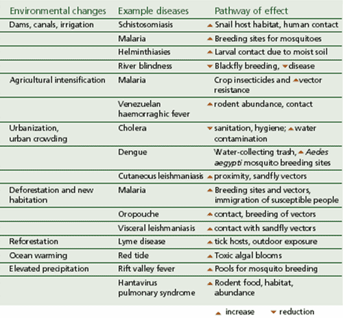 changes in healthcare environment Health care or healthcare is the timely, sensitive to change and how it affects a species' ability to control and adapt to its environment.