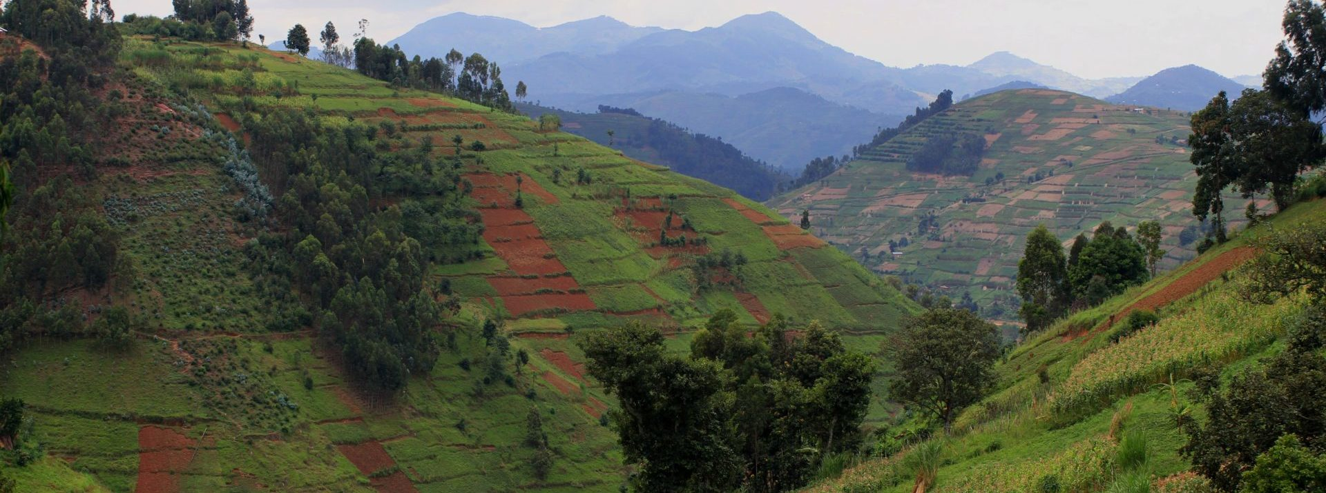 Using Rwanda's INDC to Evaluate Projects Funded by Climate Finance