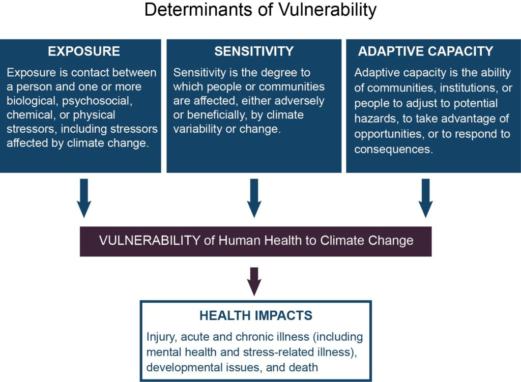 the determinants and impacts of income Low-income groups who find it difficult to achieve a balanced healthy diet, are often referred to as experiencing food poverty or food insecurity 5 there are many aspects to food poverty but three of the main barriers to eating a balanced healthy diet include cost, accessibility and knowledge 6.